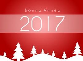 RAPID BOX vous souhaite une excellente année 2017